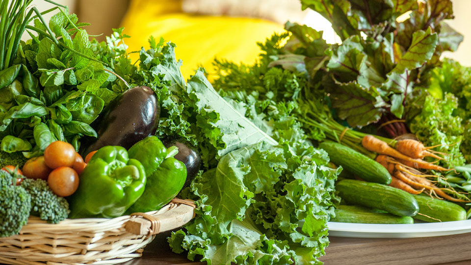 Organic vs. Conventional: Is the Proof in the Nutrition?