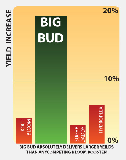 Big-Bud-charts-graphs
