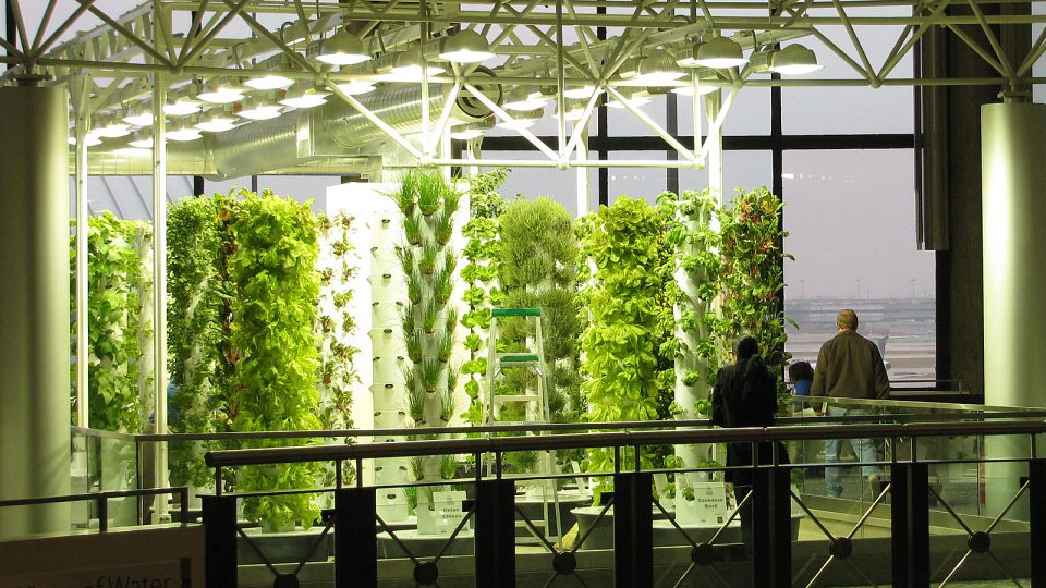 aeroponics-and-NASA