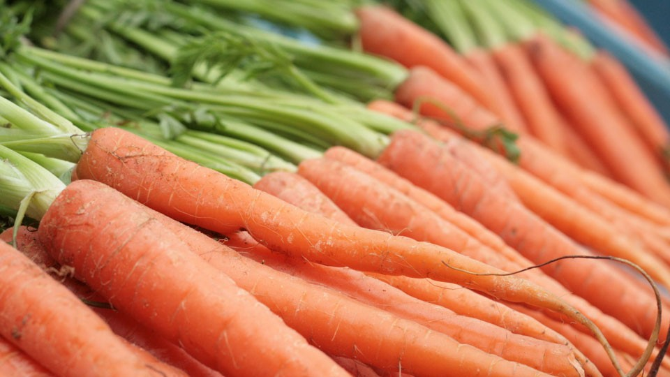 growing-carrots-that-people-are-pleased-to-eat