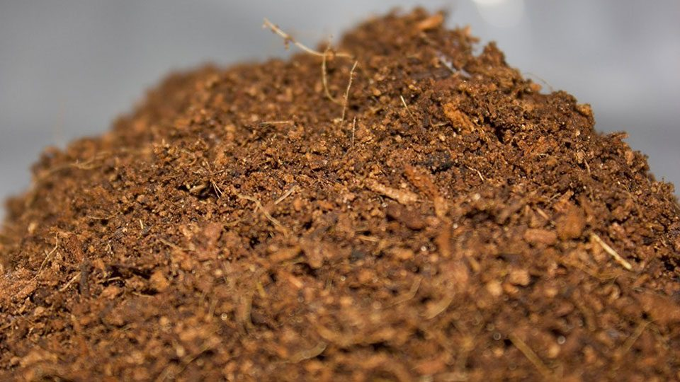 how-to-get-the-greatest-benefits-from-coco-coir