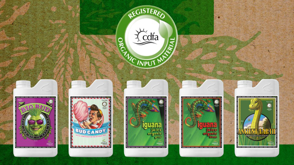 organic-oim-hydroponic-nutrients-960×540-2